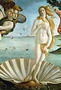 Botticelli: Zrození Venuše