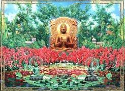 Buddha s lotusy