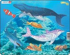 Doplň Mořská zvířata a ryby