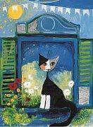 Kotě v okně