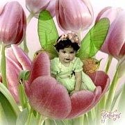 Kráska v růžovém tulipánu