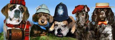 Psi s klobouky