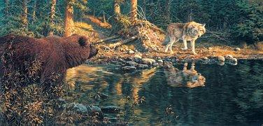Setkání u řeky