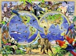 Svět divokých zvířat