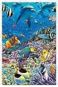 Život v moři