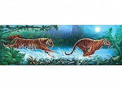 Běžící tygři
