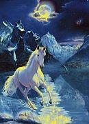 Bílý hřebec