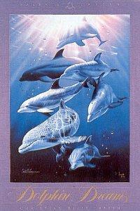 Delfíní sny - 1