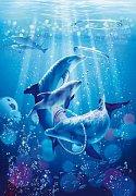 Delfíní symfonie
