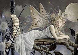 Dívka ze snu