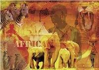 Dojmy z Afriky