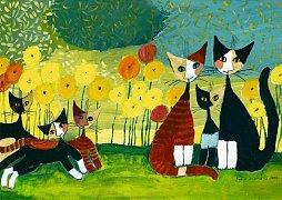 Kočky spolu