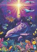 Korálový svět