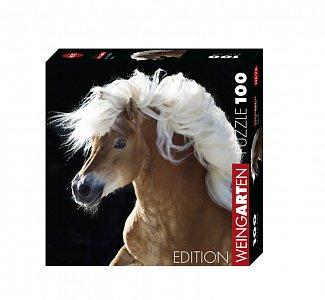 Kůň - 1