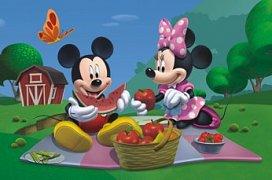 Mickey Mouse na pikniku