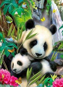 Panda 300d - 1