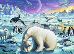 Polární zvířata