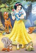 Princezny minipuzzle