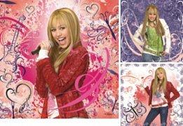 Rockstar, Hannah Montana