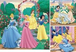Sny princezen
