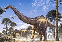 Superosaurus