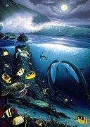 Tajemství moře
