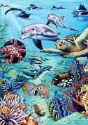 Tropické vody
