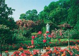 Zahrada v Mainau