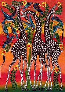Žirafy - 1