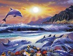 Život v oceánu